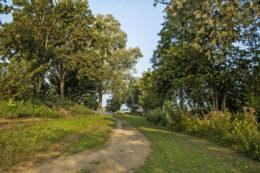 Molenstrand-Maasbommel-activiteiten-struinen